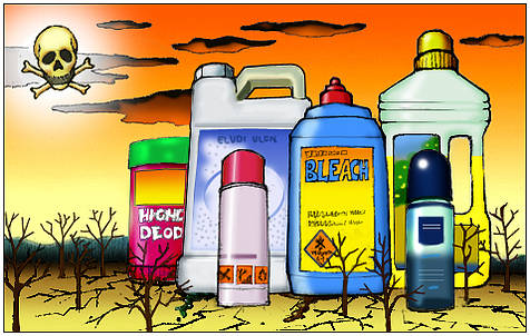 Are You Still Using Toxic Chemicals In Your Home My Big